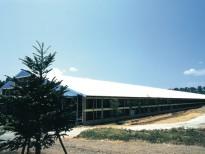 品川牧場 牛舎の施工事例・実績写真